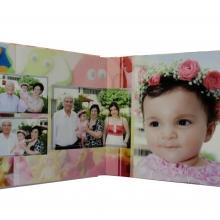 P3030893 (2) copy